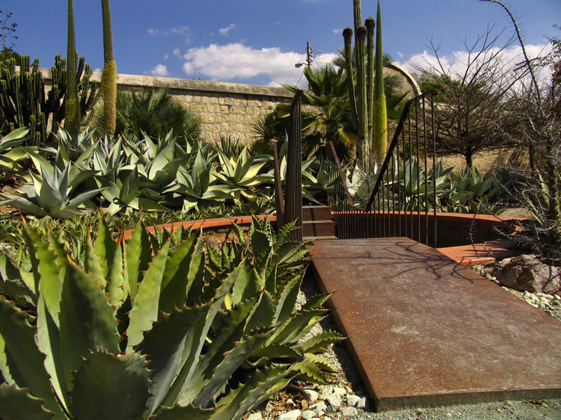 Jardin botanico 4 oaxaca bed and breakfast estancia de for Jardin botanico contacto